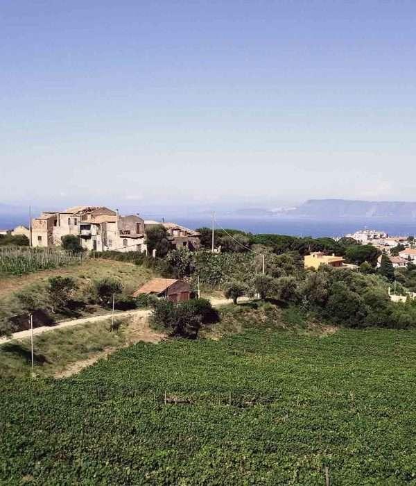 Sicily wine tasting